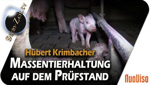 Massentierhaltung auf dem Prüfstand – Hubert Krimbacher bei SteinZeit