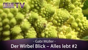 Der Wirbelblick – Alles Lebt! Teil 2 – Gabi Müller