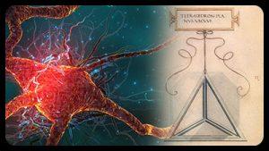 Global Brain #2 – Werkzeuge der Veränderung – Dr. Hans Hein