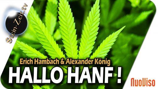 Hallo Hanf – Erich Hambach und Alexander König bei SteinZeit