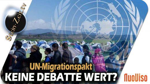 Globaler Migrationspakt – Keine Debatte wert? – SteinZeit mit Erich Hambach & Peter Herrmann
