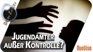 Jugendämter außer Kontrolle – Heiner Schmitt bei SteinZeit