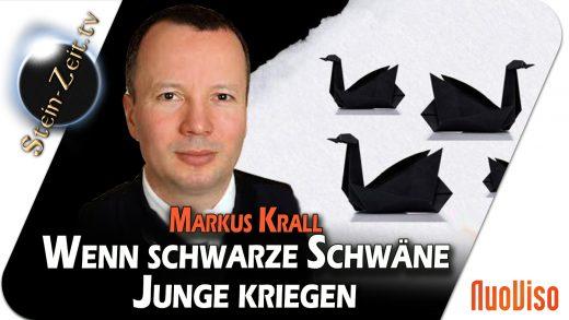 Wenn schwarze Schwäne Junge kriegen – Markus Krall bei SteinZeit