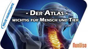 Der Atlas – wichtig für Mensch und Tier – Elisabeth Westermann