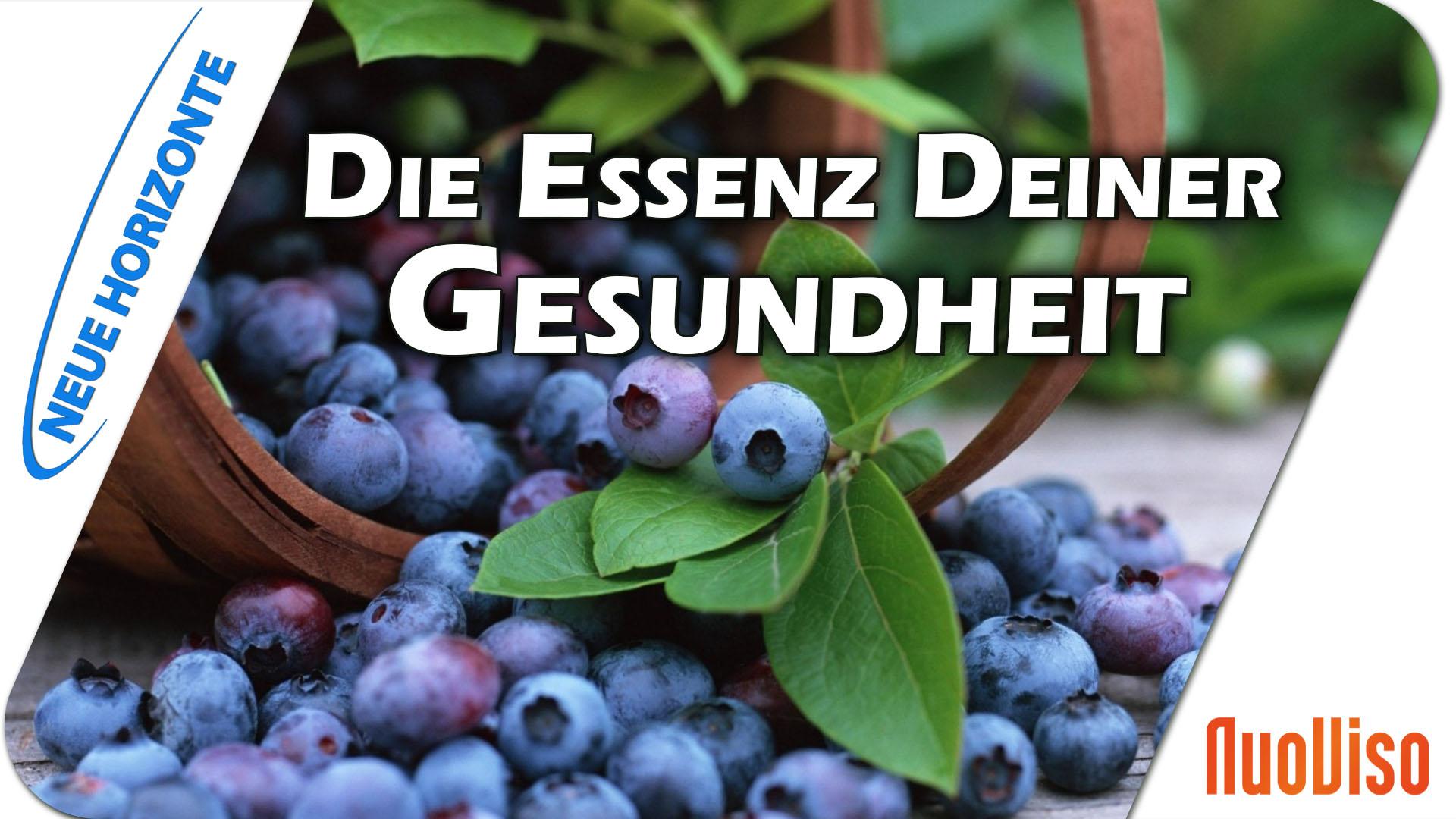 Die Essenz Deiner Gesundheit – Jutta Suffner