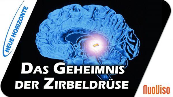 Die Zirbeldrüse als Schlüssel – Dr. Heidi Wichmann
