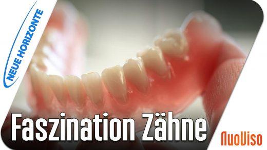 Faszination Zähne – Prof. Werner Becker u. Alfred Dietrich