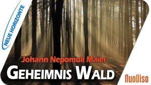 Geheimnis Wald – Johann Nepomuk Maier