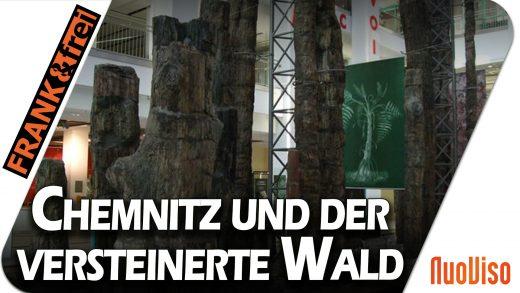 Chemnitz und der versteinerte Wald