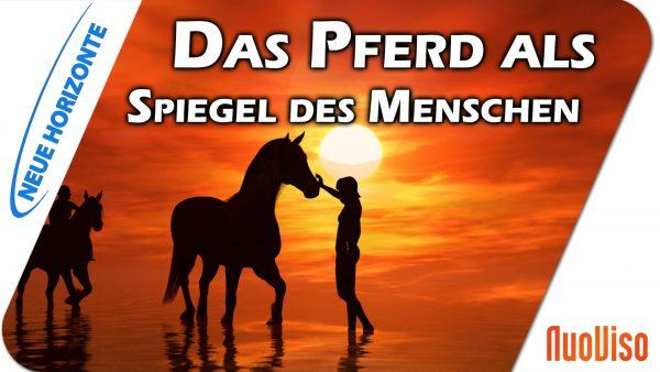 Pferde als Lehrer und Spiegel des Menschen – Annette Asmus-Budny