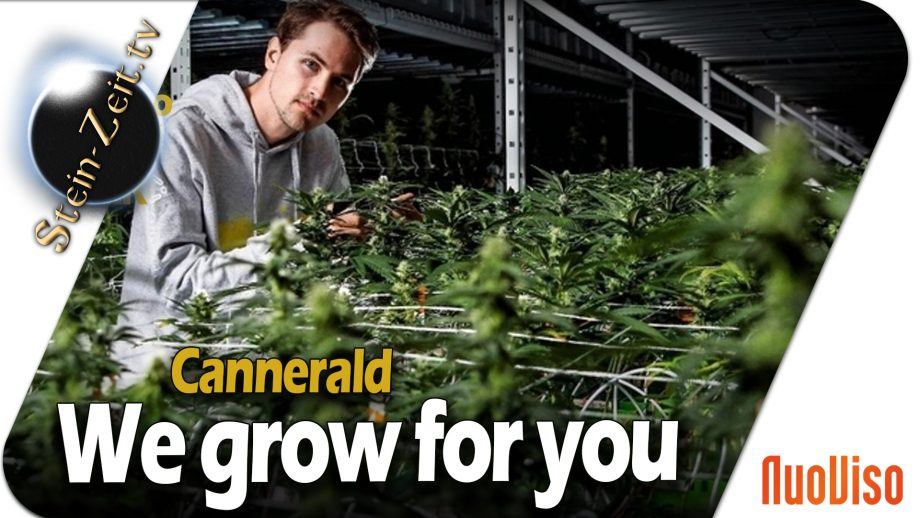 CannerGrow – We grow for you