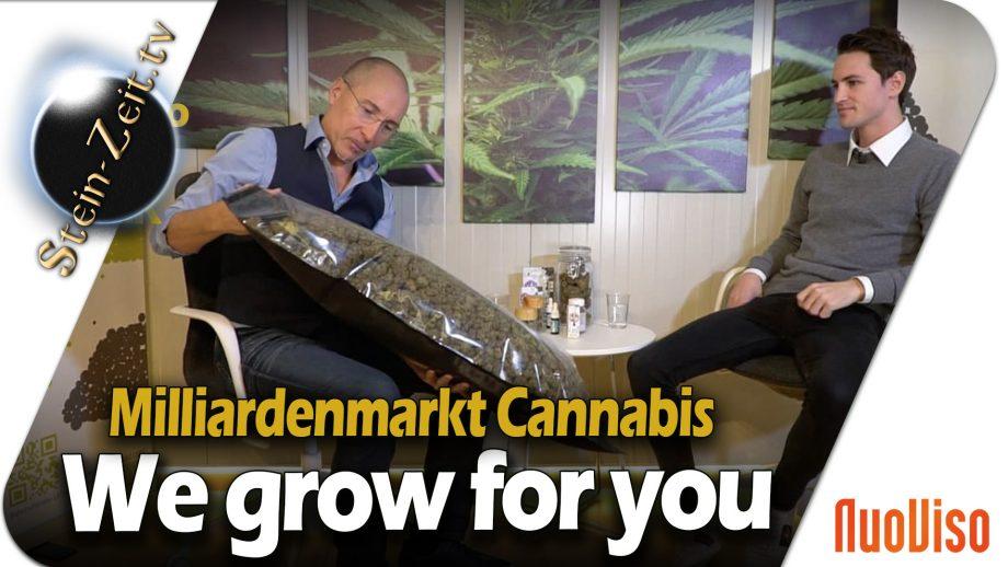 Deine eigene Cannabispflanzen mit CannerGrow – Levin Amweg im Gespräch mit Robert Stein
