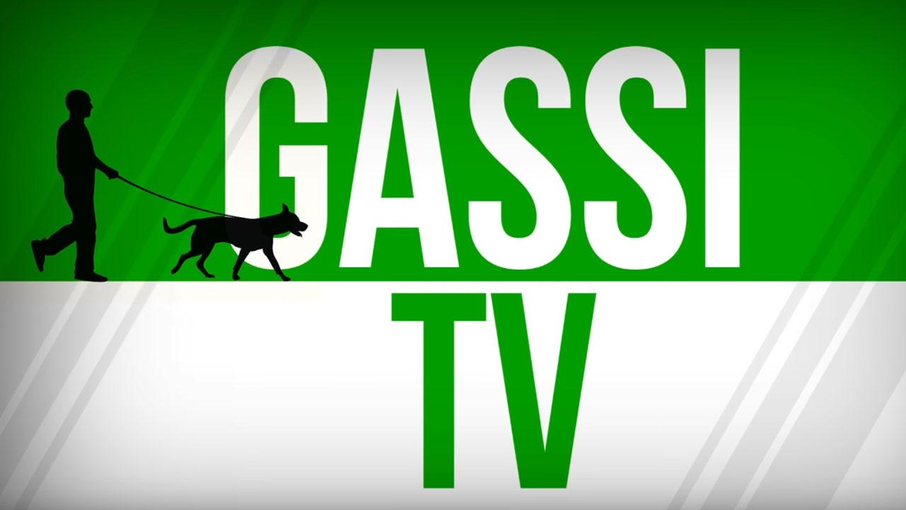 Neu: Gassi TV mit Robert Stein